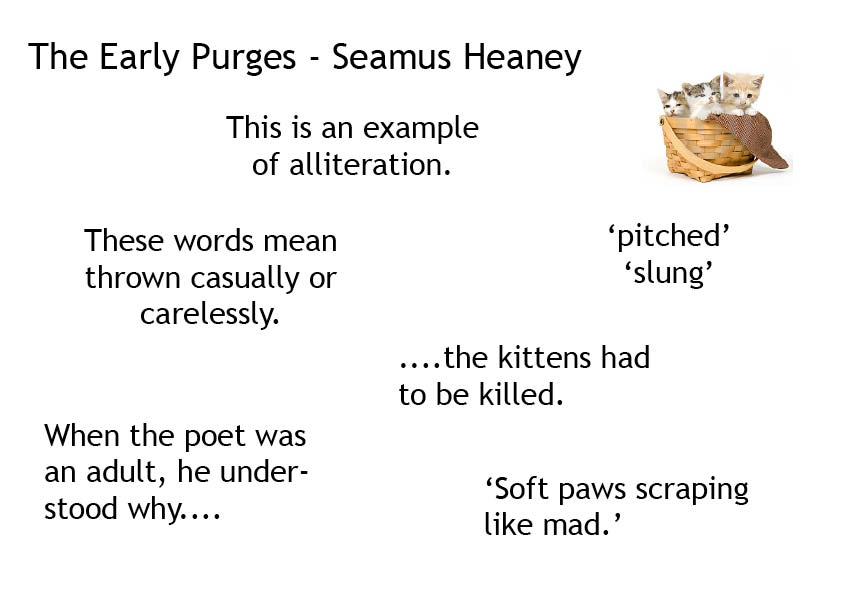 the early purges The early purges by seamus heaney i was six when i first saw kittens drown dan taggart pitched them the scraggy wee shits into a bucket a frail metal sound soft paws scraping like.