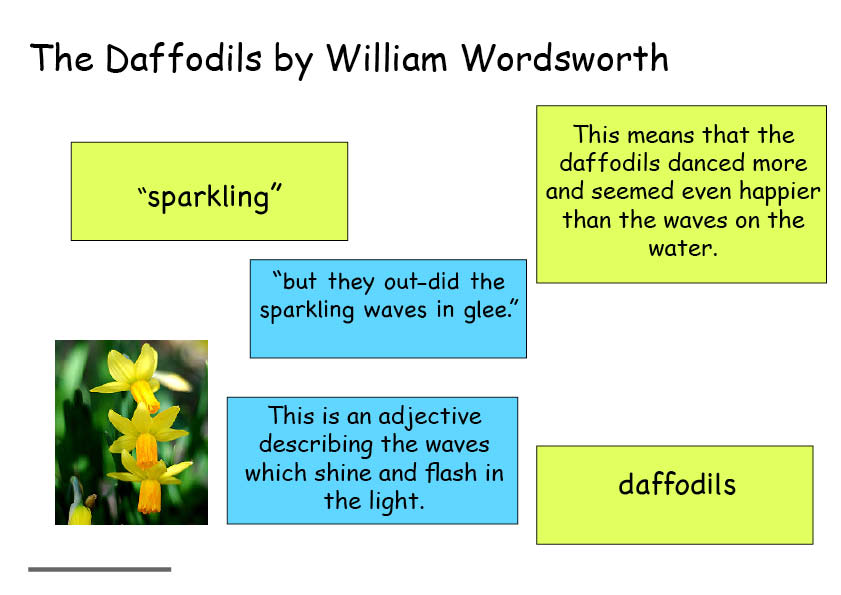 daffodils poem essay Free essay on daffodils by william wordsworth poetry intertextual oral task available totally free at echeatcom, the largest free essay community.